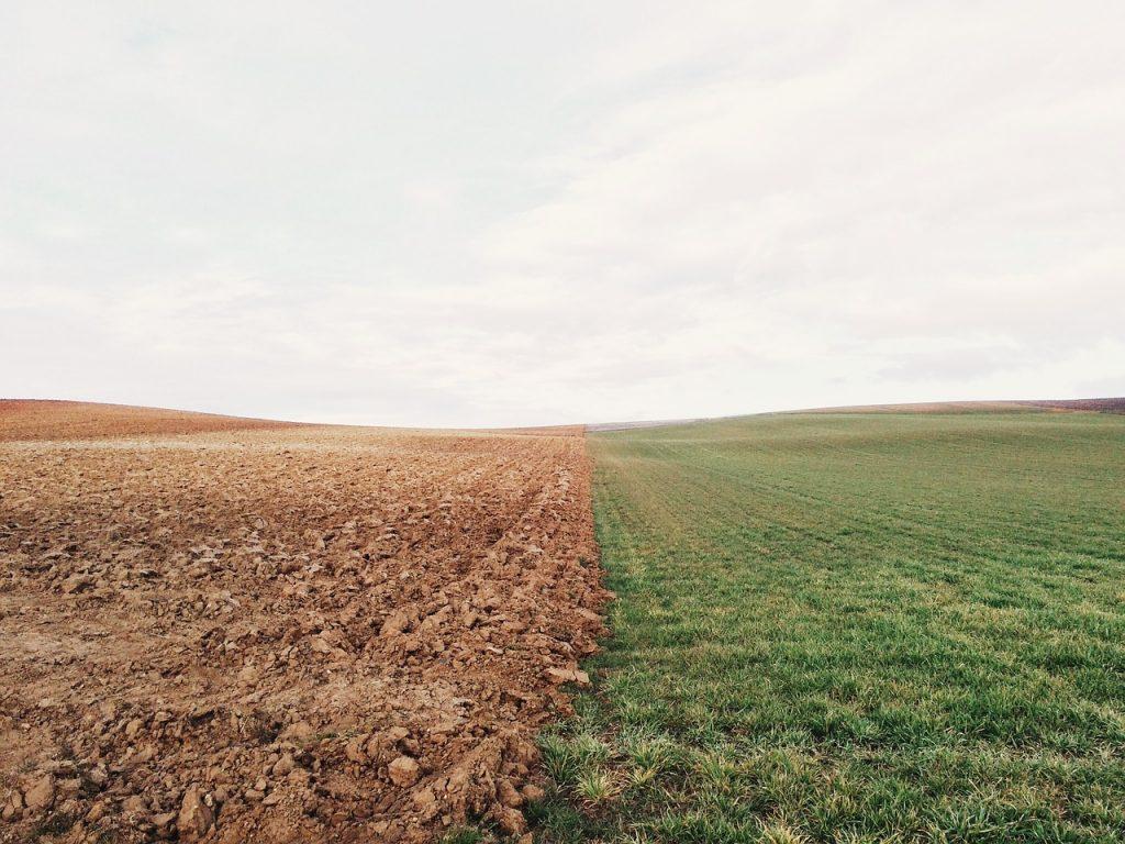 Fertilidad del suelo agrícola